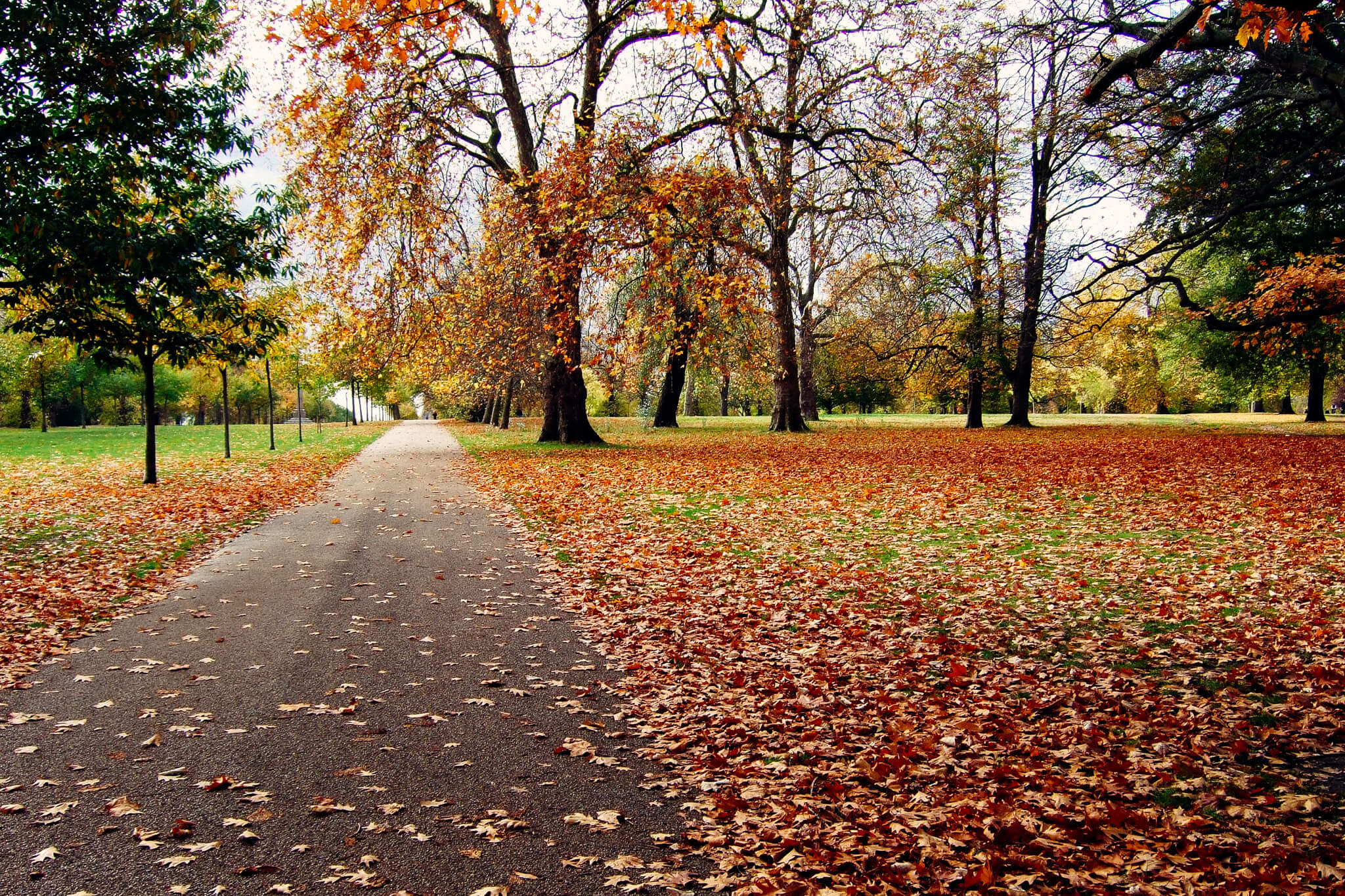 What's on in London in autumn